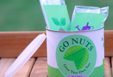 Go Nuts: A Recycle Project